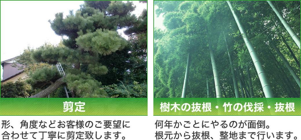 剪定:形、角度などお客様のご要望に合わせて丁寧に剪定致します。 樹木の抜根・竹の伐採・抜根:何年かごとにやるのが面倒。根元から抜根、整地まで行います